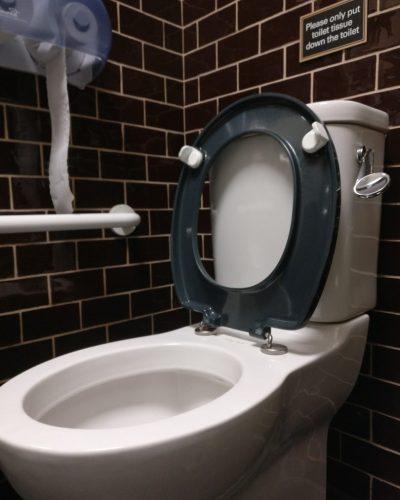 Erect toilet seat